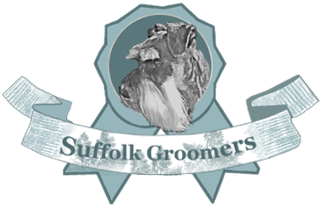 Suffolk Groomers – Mobile Dog Groomer